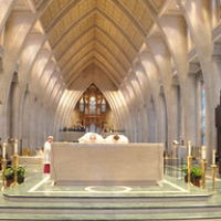 """Chrism Mass_0490 • <a style=""""font-size:0.8em;"""" href=""""http://www.flickr.com/photos/142603981@N05/33839593142/"""" target=""""_blank"""">View on Flickr</a>"""